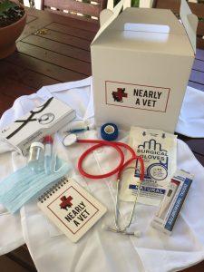 Children's Vet Kit
